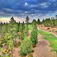 Golf Villas Landing neighborhood with tall Pine Trees