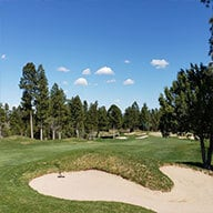 Torreon Golf Course and tall Ponderosa Pine Trees