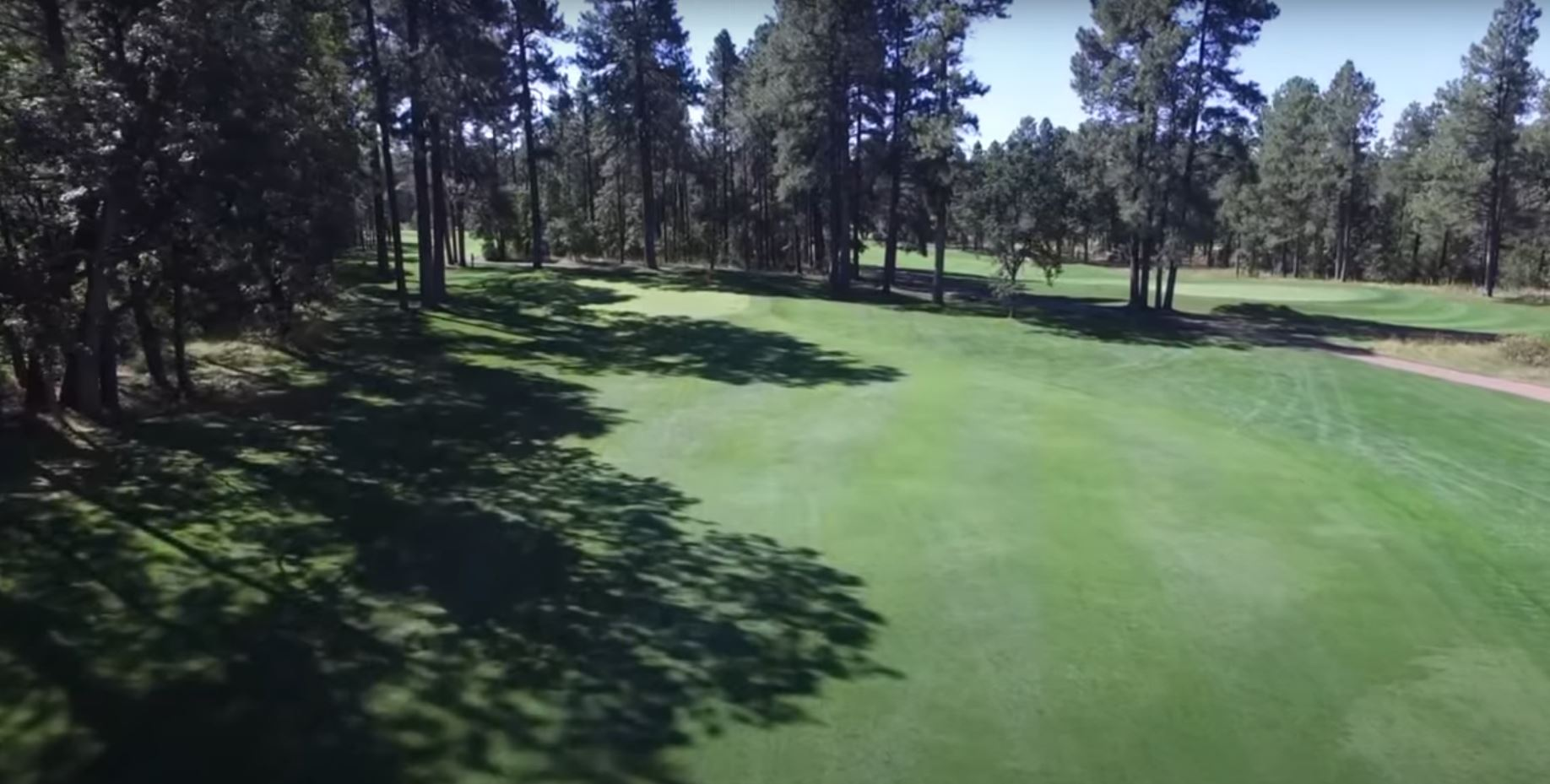 a green golf course with Pine trees on the sides