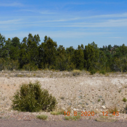 3361 Spring Court, Heber, Arizona 85928, ,Land,For Sale,Spring,232319