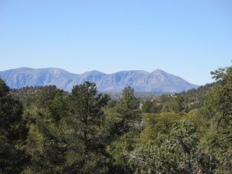 1701 Beeline Highway, Payson, Arizona 85541, ,Land,For Sale,Beeline,82242