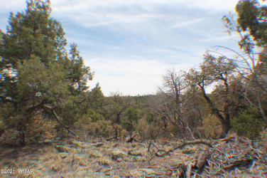 TBD Timber Ranch Road, Show Low, Arizona 85901, ,Land,For Sale,Timber Ranch,234810