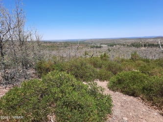 TBD Undetermined, Show Low, Arizona 85901, ,Land,For Sale,Undetermined,235517