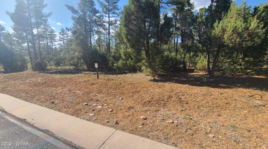 2100 Whispering Springs, Show Low, Arizona 85901, ,Land,For Sale,Whispering,235631