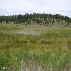 LOT 34 The Ranch At Alpine, Alpine, Arizona 85920, ,Land,For Sale,The Ranch At Alpine,232010