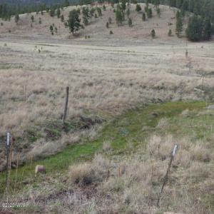 Lot 21 The Ranch At Alpine, Alpine, Arizona 85920, ,Land,For Sale,The Ranch At Alpine,229519