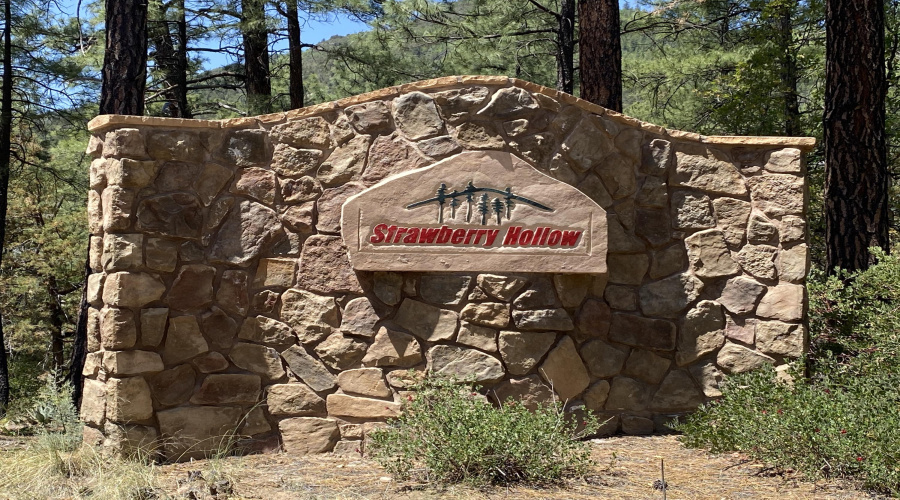 51 Forest Trail Court, Pine, Arizona 85544, ,Land,For Sale,Forest Trail Court,84849