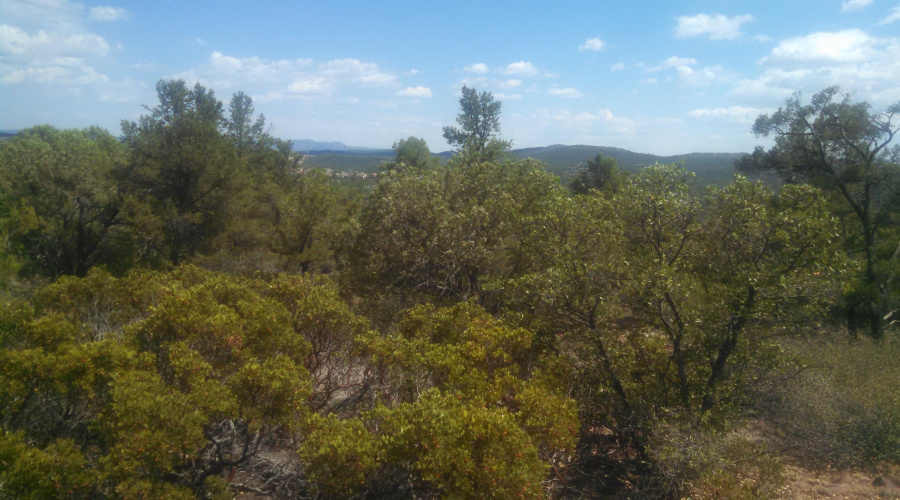 View 50 photos for 1200 Airport Road, Payson, Arizona 85541 a located in Unsubdivided