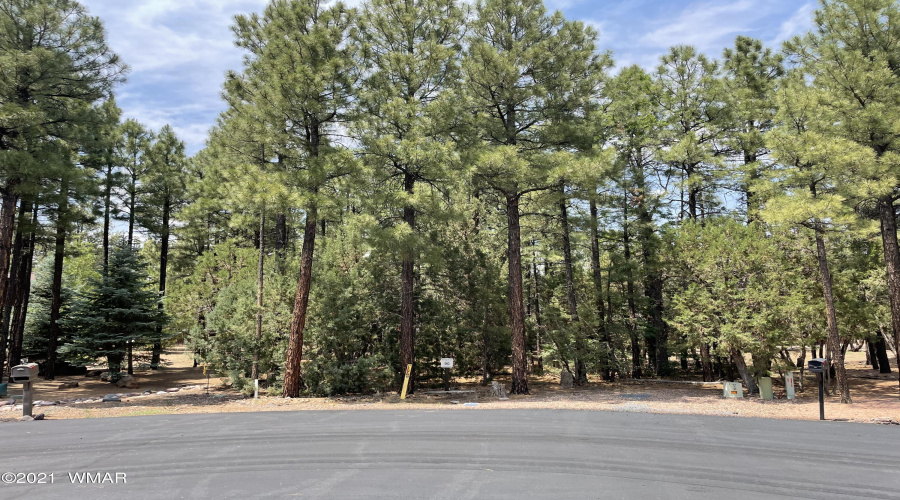 View 7 photos for 451 Madrone Lane, Show Low, Arizona 85901 a located in Tor Trailhead
