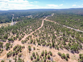 View 14 photos for 20 Acres tx area 1020, Show Low, Arizona 85901 a located in Show Low Townsi