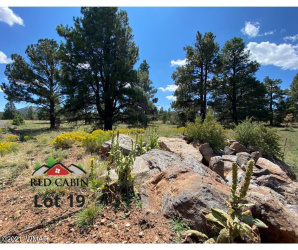 View 21 photos for Lot 19 Red Cabin Ranch, Vernon, Arizona 85940 a located in Red Cabin Ranch