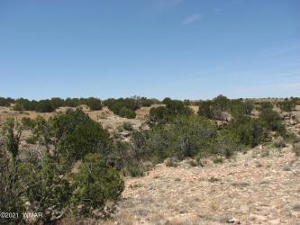 View 7 photos for 546 Flat Bush Road, Heber, Arizona 85928 a located in Chevelon Cyn Ranch