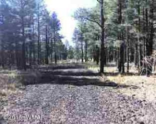 View 7 photos for Lot D TBD Thunderhorse Road, Lakeside, Arizona 85929 a located in Lakeside Unsub
