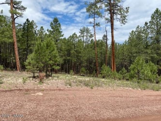 View 14 photos for 15 County Road 2083, Alpine, Arizona 85920 a located in Alpine Highland