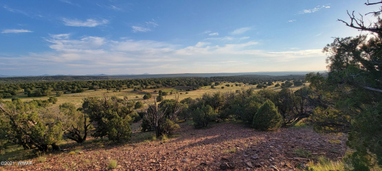 View 14 photos for TBD County Road 8288, Concho Valley, Arizona 85924 a located in Show Low Pines