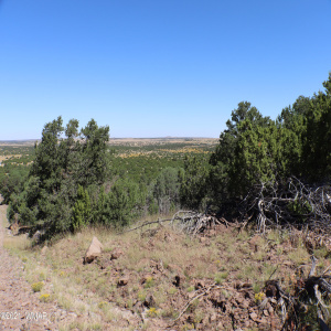 View 10 photos for TBD N3218, Concho, Arizona 85924 a located in Dutch Mountain