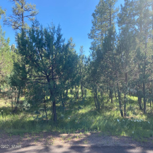 View 6 photos for 5315 Buffalo Trail, Lakeside, Arizona 85929 a located in Wolf Pines