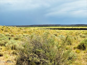 View 11 photos for Bell Brand Ranches Unit 14 Lot 345, Chambers, Arizona 86502 a located in Bell Brand Ranches