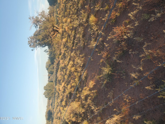 View 1 photos for TBD County Road 5458, Concho, Arizona 85924 a located in Concho Unsub