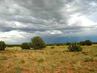 Lot 321 Chevelon Canyon Ranch, Overgaard, Arizona 85933, ,Land,For Sale,Chevelon Canyon Ranch,74808