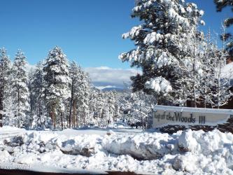 379 Redwood Lane, Pinetop, Arizona 85935, ,Land,For Sale,Redwood,227786