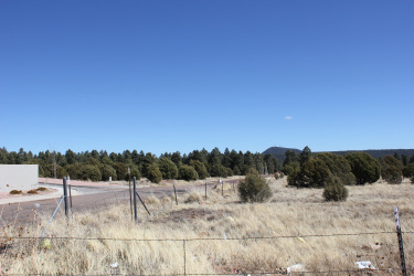160R E Hunt Drive, Show Low, Arizona 85901, ,Land,For Sale,E Hunt,218373