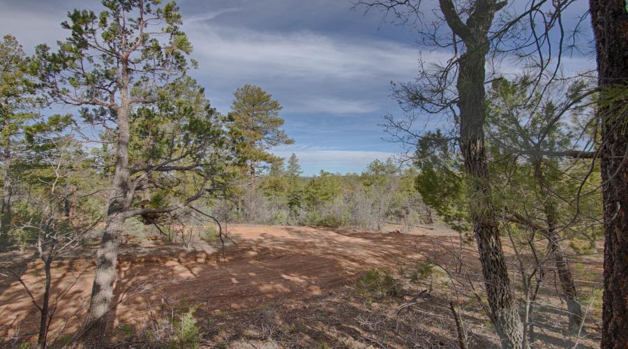 3350 W Rim Road, Lakeside, Arizona 85929, ,Land,For Sale,W Rim Road,223476