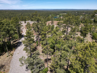 TBD Jacks Road, Pinetop, Arizona 85935, ,Land,For Sale,Jacks Road,229846