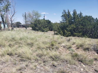 94 County Rd 5051, Concho, Arizona 85924, ,Land,For Sale,County Rd 5051,229910