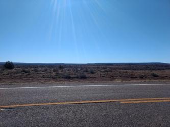 1251 Highway 191 (0.83 acres), St. Johns, Arizona 85936, ,Land,For Sale,Highway 191 (0.83 acres),230084