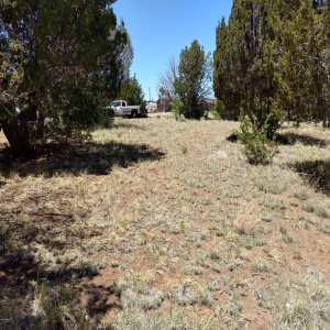 16 County Road 5099, Concho, Arizona 85924, ,Land,For Sale,County Road 5099,230087