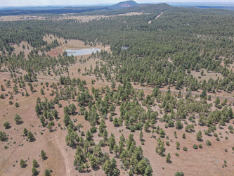 130 Lone Horseman Road, Lakeside, Arizona 85929, ,Land,For Sale,Lone Horseman,231047